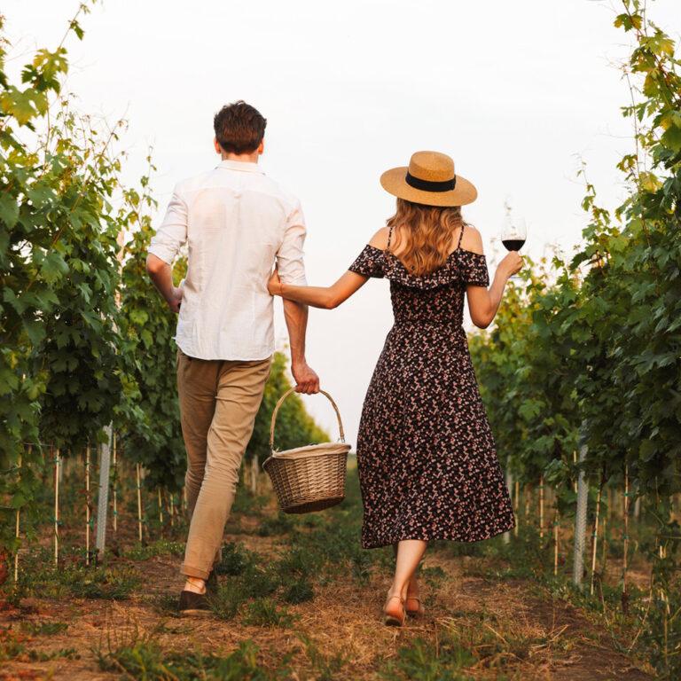 Wijnen Moniez - shop - wijnen - genieten