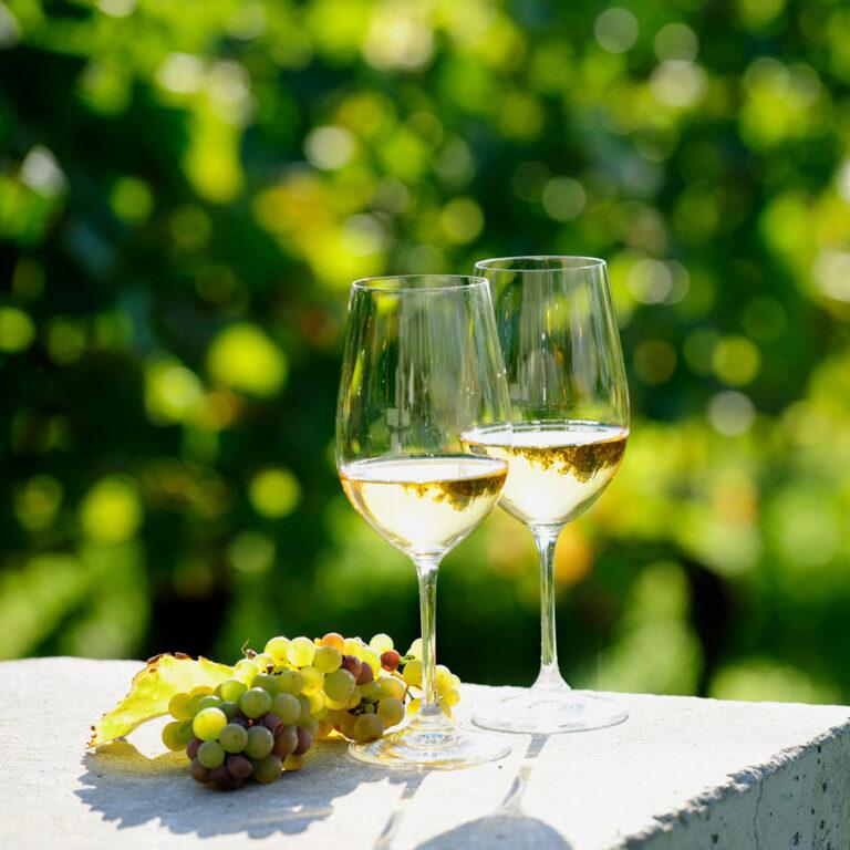 Wijnen Moniez - shop - wijnen - witte wijn glas